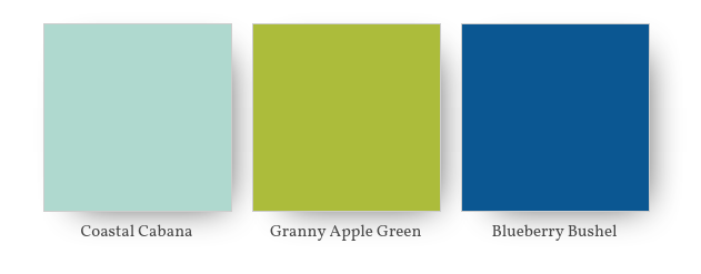 Granny Apple  Coastal Cabanna Blueberry Bushel